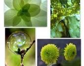 green photo set, green flower photo, green quartz, green bubble photo, art decor set, bubble art, floral art, green decor, green print set