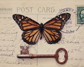 Still Life, Butterfly Photograph, Vintage Tones, Skeleton Key, Antique, Surreal Photography, Botanical, Fine Art Print, Orange, Gold, Brown