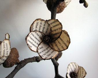 Acorn Rustic Shakespeare's Hamlet Bonsai - Original Art Paper Sculpture by Tanja Sova