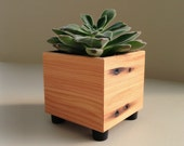 Succulent Planter Pot, Rustic Planter, Reclaimed Wood Mini Cube Succulent Pot, Wood Accent