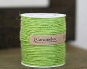 100 yds of Natural Apple Green Jute Twine Cord