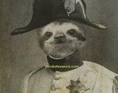 5x7 Sloth, Sloth, Sloth Print, Sloth Art, Sloth Wall Art, Sloth Decor, Sloth Nursery, Zoo Nursery, Sloth Gift, Sloth Art Print, Zoo Art