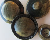 Vintage Buttons - Lot of 4 green with black accents1950's celluloid (feb 18)