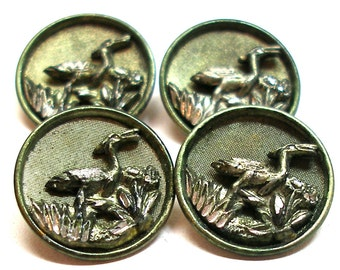 1800s French BUTTONS, 4 Victorian birds with green tint, unused.