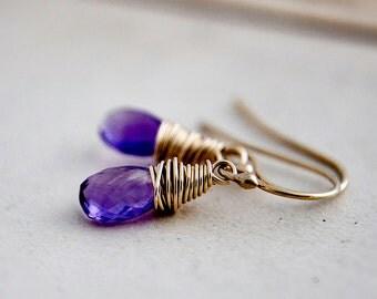 Drop Earrings, Amethyst Necklace, Amethyst Jewelry, February Birthstone, Amethyst Jewelry, Dangle Earrings, Gold Earrings, PoleStar