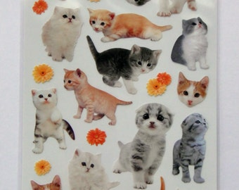 Cute Real Kittens / Cats & Flowers Photo Stickers From Japan