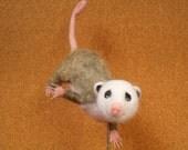 Oliver the Baby Opossum Needle Felt