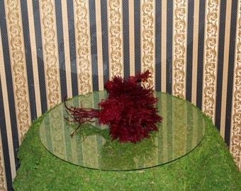 Princess Pine Preserved-25 stems of beautiful Princess Pine-Lycopodeum-Fairy Garden Trees-Railroad Hobbyist-Burgundy or green