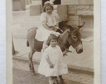 RPPC Real Photo POSTCARD of PHOTOGRAPHER'S Mule/Donkey & Cute Little Girls