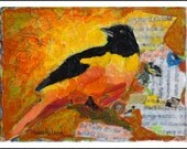 Oriole Bird, Acrylic Collage, Original Painting, Contemporary Art, Bird Motif, Warm Colors, Modern Collage, Black-headed Oriole,  6 x 8