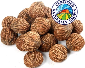 Black Walnuts - 1 LB - The Happy Nut