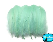 Goose Feathers, 1 Pack - AQUA GREEN Goose Nagoire Loose Feather - 0.25 oz. : 2062