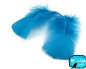 Blue Turkey Feathers, 1 Pack - TURQUOISE BLUE Turkey T-Base Plumage Feathers 0.50 oz. : 149