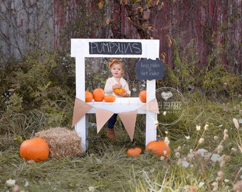 Baby Toddler Child Photography Prop Digital Backdrop for Photographers -Fall PUMPKIN STAND DIGITAL Backdrop