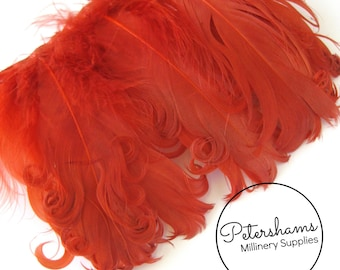Curled Goose Nagorie Feather Fringe (around 8-10 feathers) for Millinery & Crafts - Burnt Orange