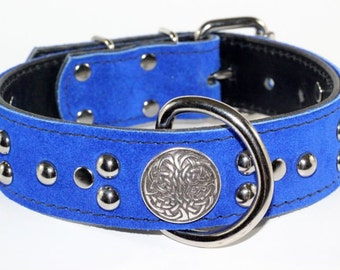 "Blue Suede Leather Dog Collar W/Conchos - Celtic Dog Collar - Celtic Leather Dog Collar - 1.5"" Wide Collar"