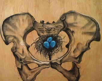 "Pelvis with Bird's Nest print 8"" x 10"""