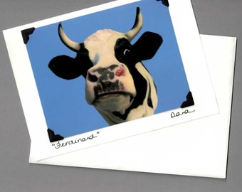 Holstein Steer Card - Funny Cow Card - Cow Art - Black and White Cow  - 10% Benefits Animal Rescue