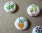 Cutie Cacti Pins or Magnets, cactus, succlents, whimsical