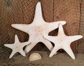 Set of 3 Star Fish -Indoor Ocean Beach Decoration