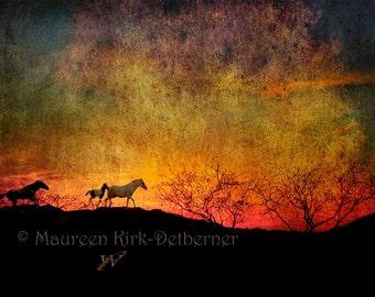large horse print, metal print, 24 x 16, horse photograph, equine fine art, horses running, red sunset, western decor, southwestern decor