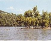 Missouri Postcard Lake Taneycomo Rockaway Beach - Fun at the Lake Summer Swimming - Vintage Postcard - Missouri Lake Vacation