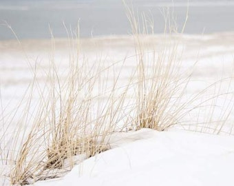 Beach Themed Decor, Cottage Decor, Nature Photography, Beach Photography, Beach Grass, Sand Winter, Winter Photography, Coastal Prints