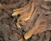 Polwarth  Wool Locks / Needle Craft / Raw Wool / Doll Hair