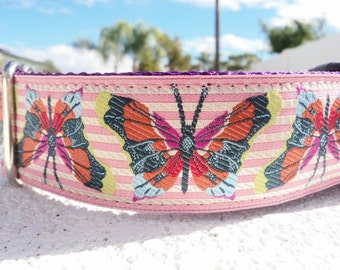 """Sale Large Girl Dog Collar 1.5"""" wide Quick Release buckle or Martingale collar style adjustable Butterfly"""