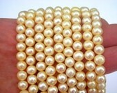 Grade A+ light yellow freshwater pearls, 6mm to 7mm pale yellow pearls, full strand