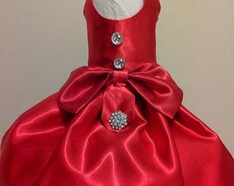 Christmas Beauty-Elegant Doggie Dress