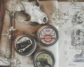 Native Herbal Salves