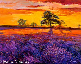 Sunset Over Lavender Field2-Original Oil Painting on Canvas 26 x 20 Landscape Painting Original Art Impressionistic Oil by Ivailo Nikolov