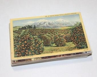 SALE - 100 Vintage California Postcards - DAMAGED