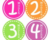 Monthly Baby Stickers FREE Baby Month Milestone Stickers, Baby Month Stickers, Baby Girl Bodysuit Sticker, Spring Orange Green Hot Pink 129G