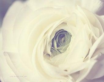 Ranunculus Print or Canvas Wrap, Ivory Flower Photograph, Macro Photography, Elegant Bedroom Decor, Sensual Art, Romantic Art,Cream Blossom.