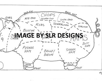 Pig Diagram - Side View