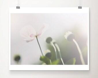 pink poppy photograph pink flower photograph nature photography pink poppy print pink flower print botanical print pastel home decor