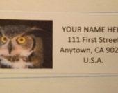 Brown Owl Return Address Label