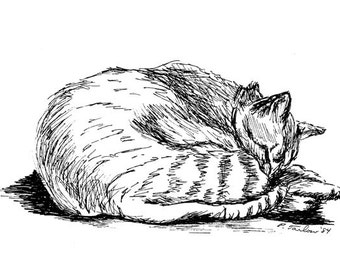 Tabby Cat Drawing, Cat Pen and Ink, Tabby Cat Print, Tabby Cat Pen & Ink Illustration, Tabby Cat Pen and Ink Drawing, Cat Art by P. Tarlow
