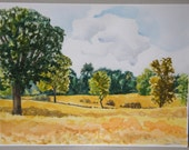 Oak with Fields, Maple Rd., Braun Farm, early fall landscape,original watercolor painting, fall colors, golds, greens, blue sky, tree,clouds