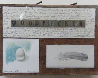 Woodpecker Notes, mixed media original watercolor, monoprint, assemblage on repurposed wood with plexiglas covering, bird, egg, feather