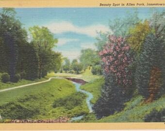 Allen Park, Jamestown, New York - Vintage Linen Postcard - Unused (LLL)