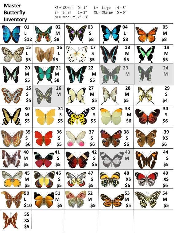 Custom butterfly listing for Magalie