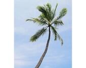 Palm trees Hawaii Photograph - City of Refuge Hawaii - Hawaii beach photograph - Big Island photograph - Hawaii art print - Palm trees decor
