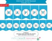 Baseball Party Sports Party Printable Bunting Flag Banner - Editable Text Template - Instant Download - Baseball Birthday Party