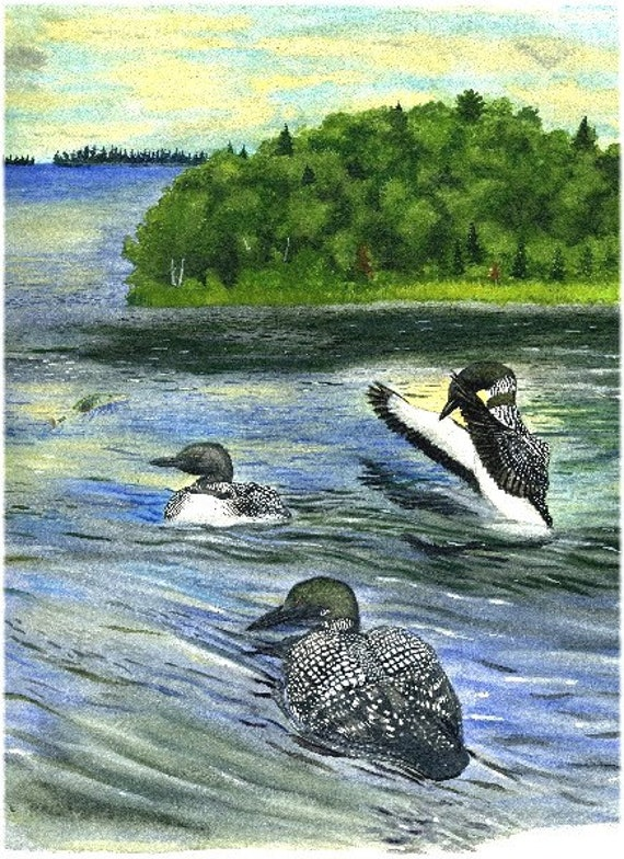 Loon note card, featuring common loons with muskie in watercolor/mixed media