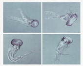 Bathroom Art Set,  Four Jellyfish Photography Set, 4 Photograph Set, Black and White Print Set, Modern Wall Art, Jellyfish Picture