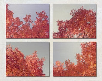 Tree Photography Set, Fall Pictures,Set of Four Print, 4 Photo Set, Grey and Red Wall Art, Nature Photographs, Wall Decor Collection