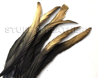 Gold tips long Black Coque tail feathers painted selected loose rooster tail feathers for millinery, decor / 10-12 in (25-30 cm) / F56-10/6G
